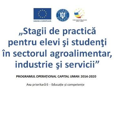 POCU: 47,8 milioane de euro pentru practică plătită în cadrul companiilor