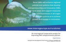 Reuniune a grupului de lucru in cadrul Proiectului RURAL SMEs.