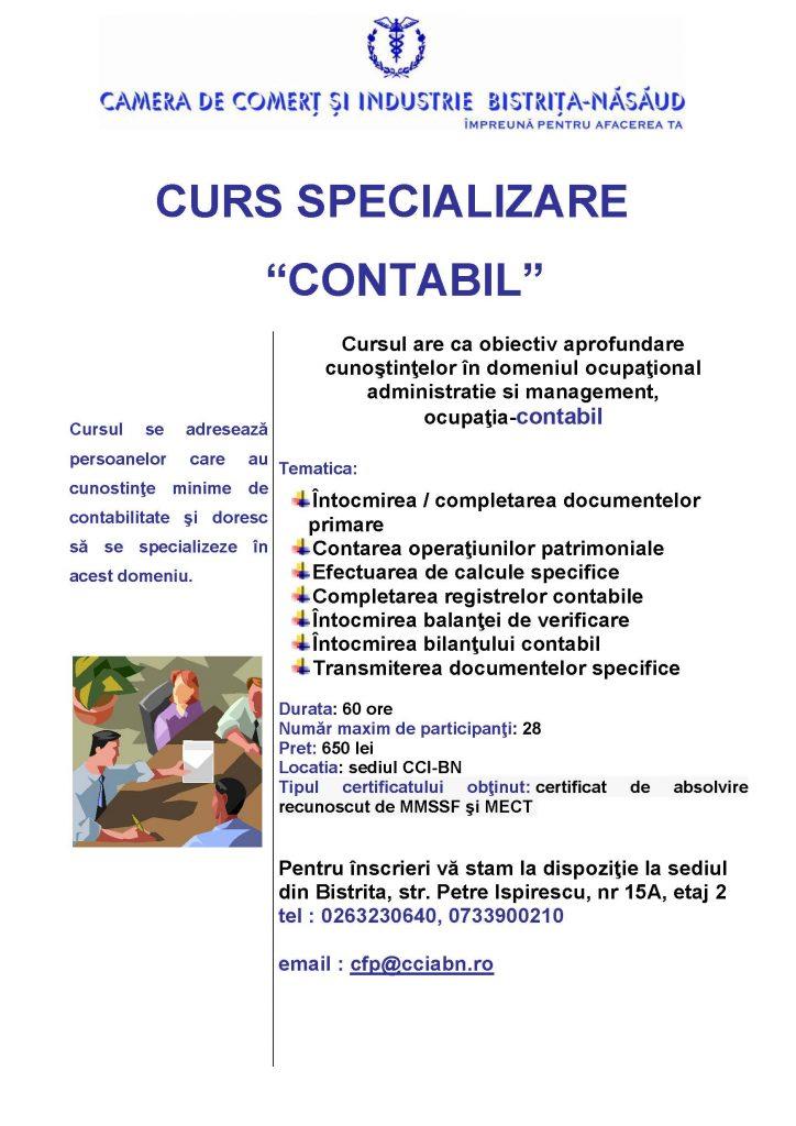 Curs Contabil