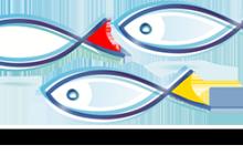 Sprijin financiar pentru inovare în domeniul acvaculturii!