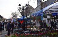 "Expo Bistrița ""Grădina și Ambianță"""