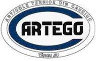 Propunere de colaborare cu firma ARTEGO S.A.