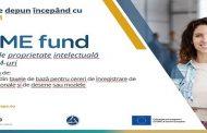 Fonduri europene dedicate IMM-urilor